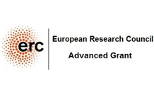 Renaud Demadrille - ERC Advanced Grant 2019